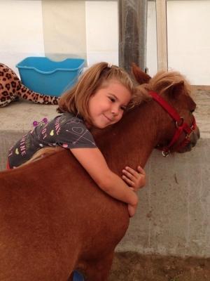 mini-chevaux_mirabel