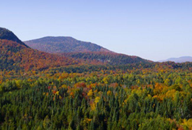 montagne_automne_entete_1980x630