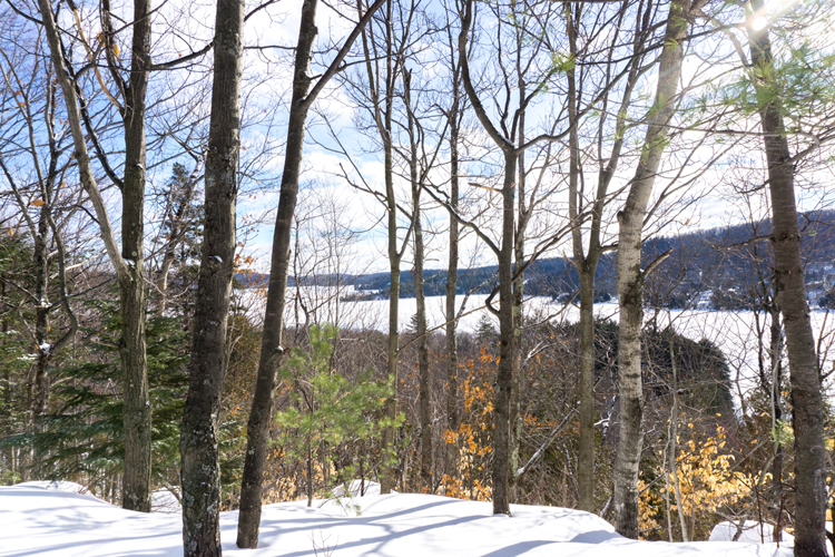 auberge_lac-morency_jennifer_dore_dallas-24_750x500