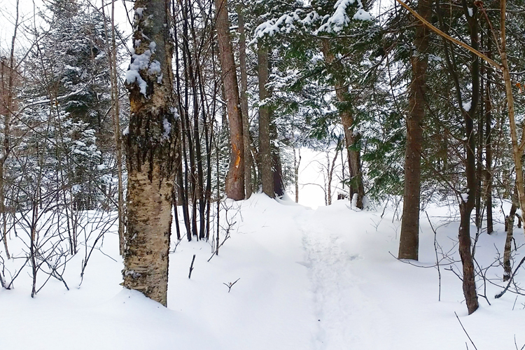 ontheedgehiking_kiamika_hiver_07_750x500