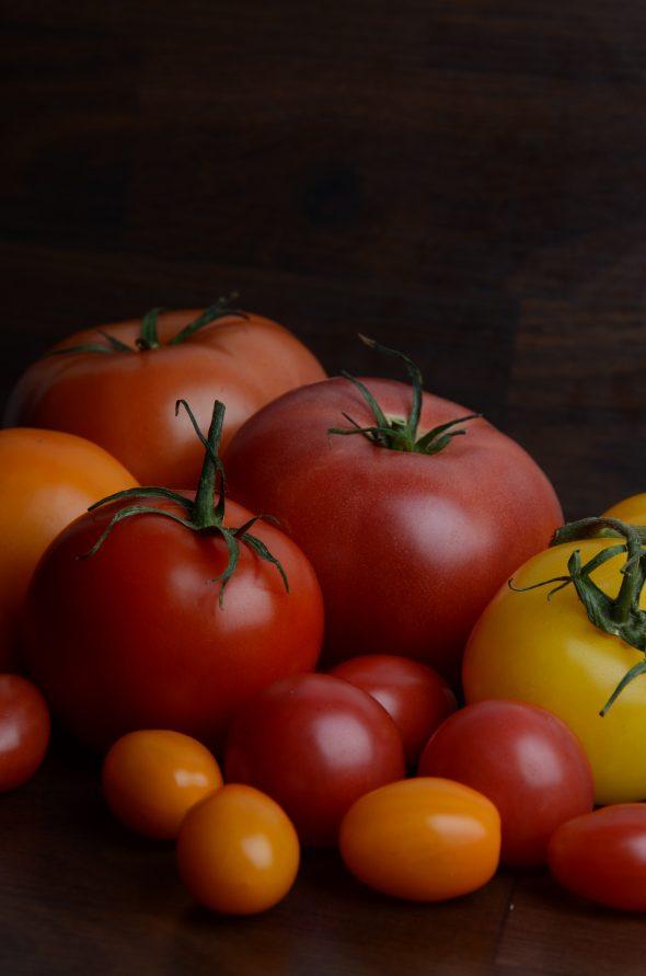 varietes_tomates