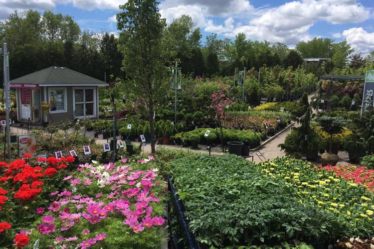 centre_jardin_dion_2